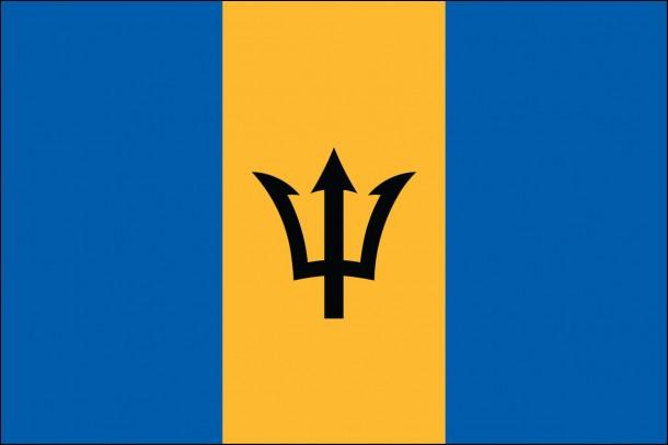 Barbados flag  (10)