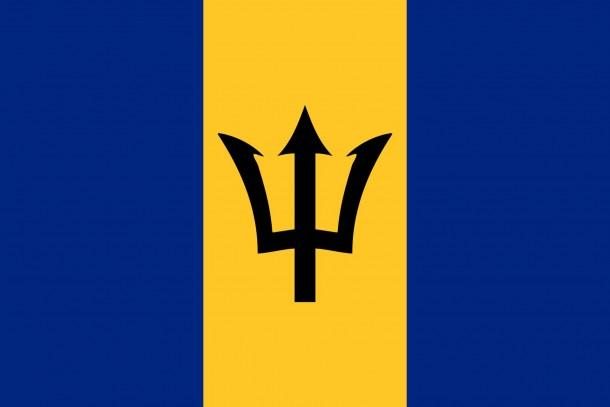 Barbados flag  (12)