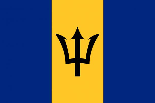 Barbados flag  (13)