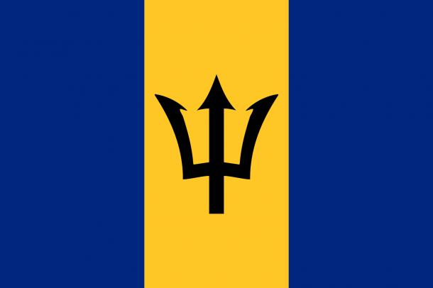 Barbados flag  (8)