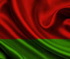 Belarus flag (1)