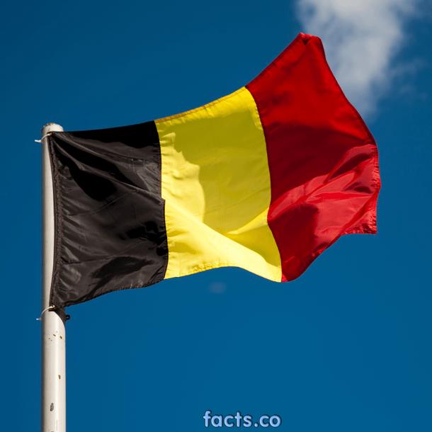 Belgium Flag (12)