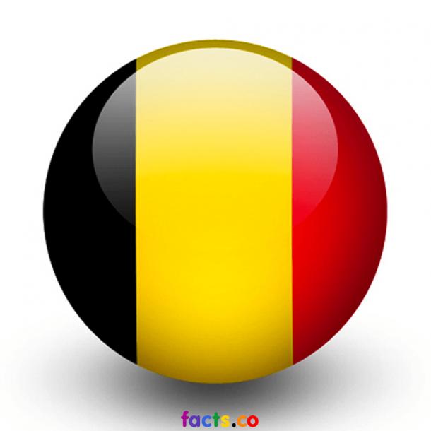 Belgium Flag (4)