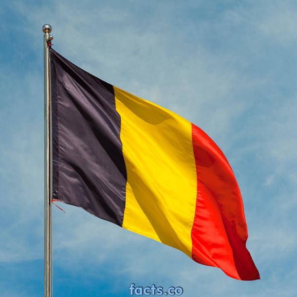 Belgium Flag (8)