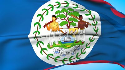 Belize Flag  (12)