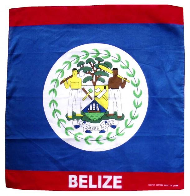Belize Flag  (3)
