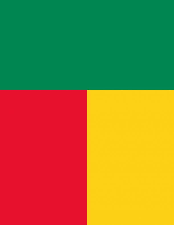 Benin Flag  (4)
