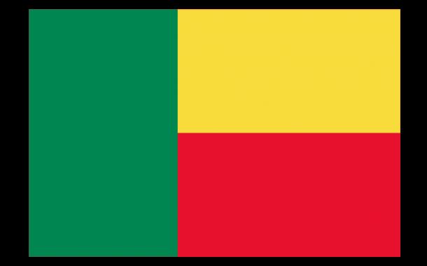 Benin Flag  (5)