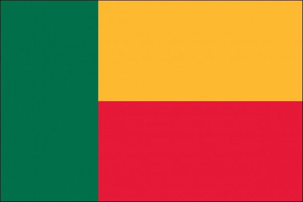 Benin Flag  (8)