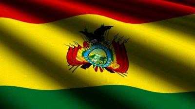 Bolivia Flag (12)