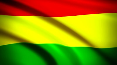 Bolivia Flag (18)