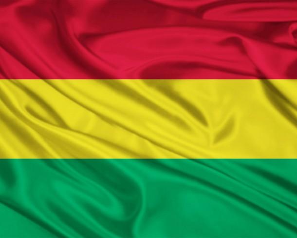 Bolivia Flag (20)
