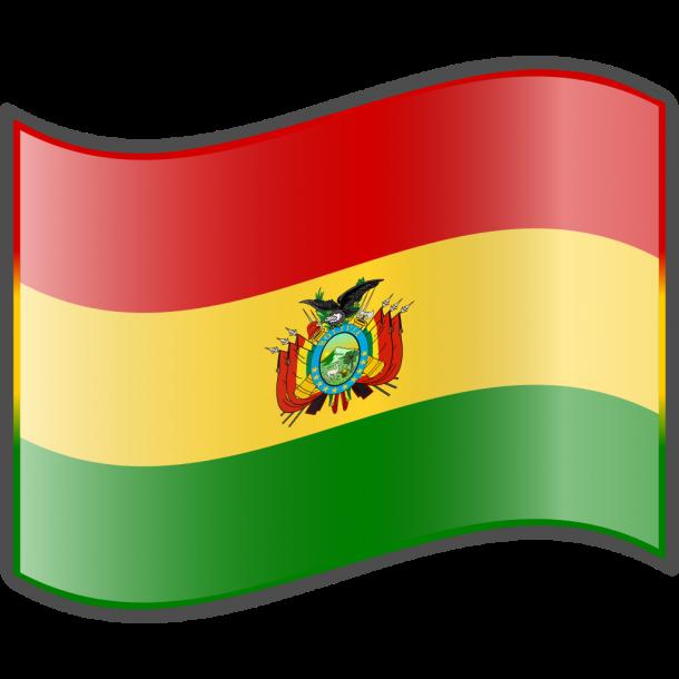 Bolivia Flag (9)