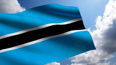 Botswana flag (1)
