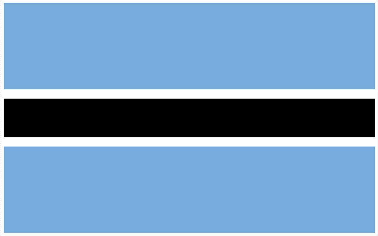 Botswana flag (10)