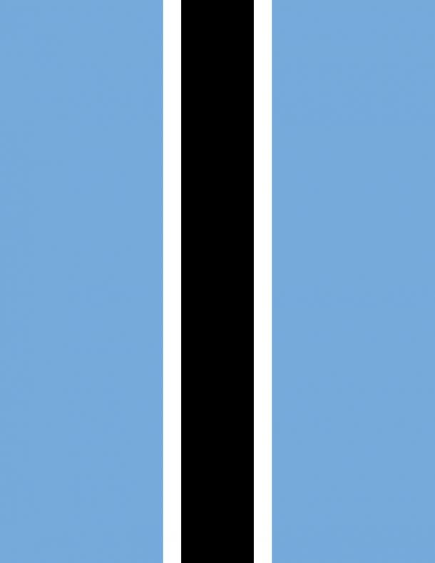 Botswana flag (5)