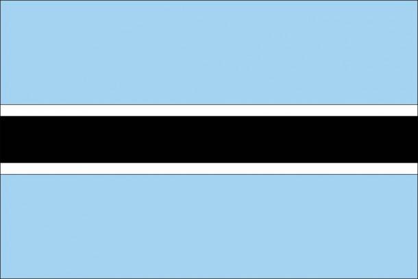 Botswana flag (8)