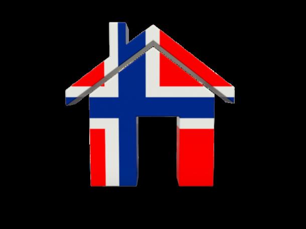 Bouvet flag (8)