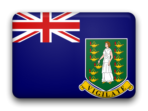 Flag of the British Virgin Islands  (13)