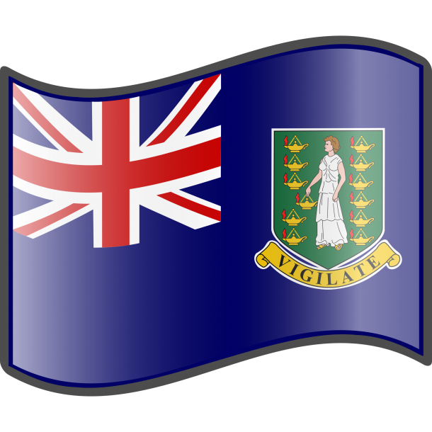 Flag of the British Virgin Islands  (2)