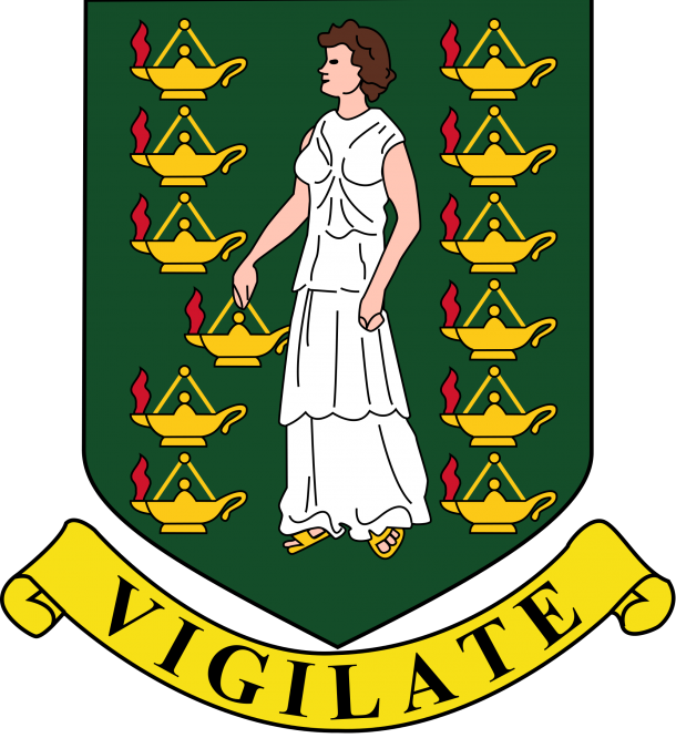 Flag of the British Virgin Islands  (4)
