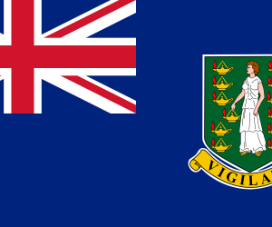Flag of the British Virgin Islands  (7)