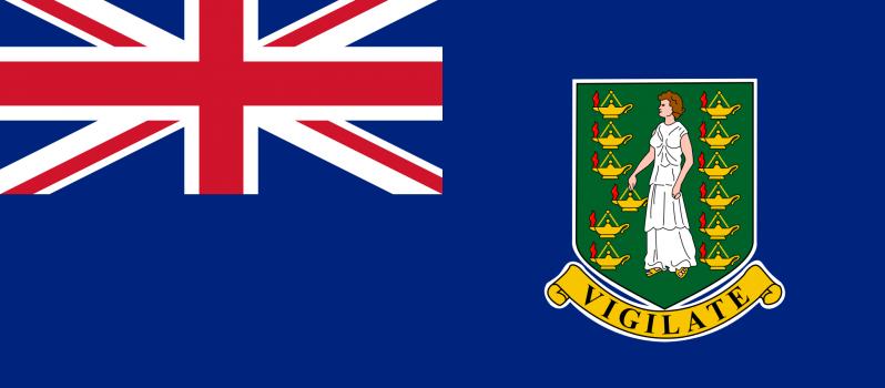 Flag of the British Virgin Islands  (7)