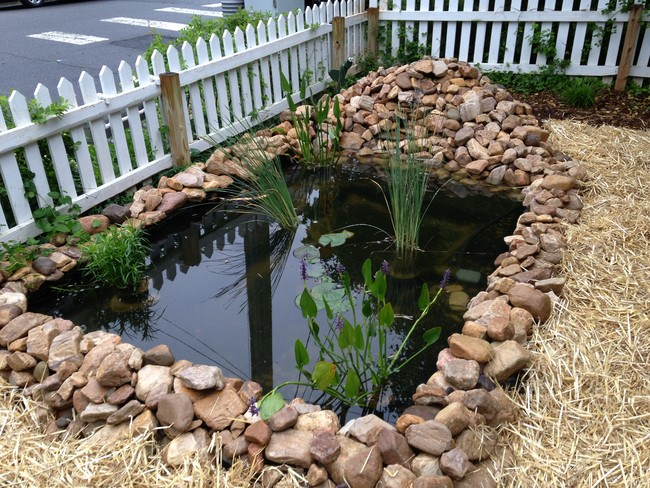Guy had a boring front yard the way he made a pond out of for Easy pond ideas