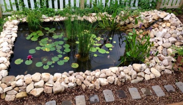 Learn How To Make An Inexpensive Pond For Your Front Yard 9