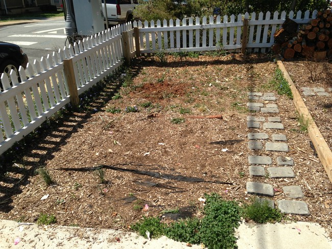 Learn How To Make An Inexpensive Pond For Your Front Yard