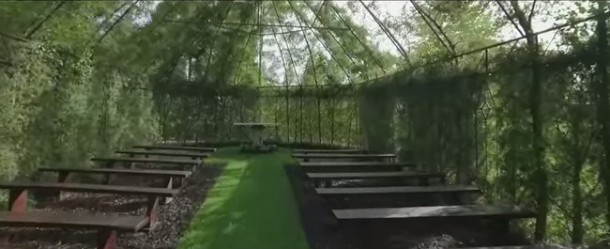 Tree Church Is Made Of Trees 2