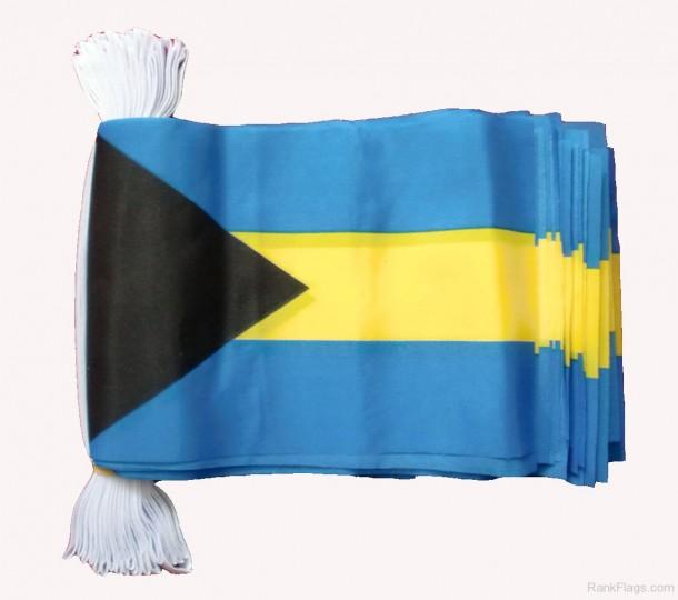 bahamas flag  (23)