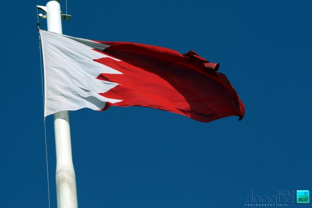 bahrain flag (17)