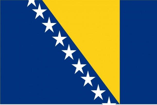 bosnia flag (1)