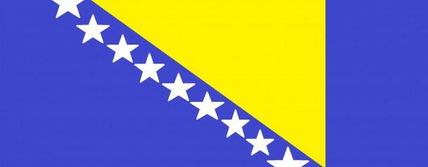 bosnia flag (13)