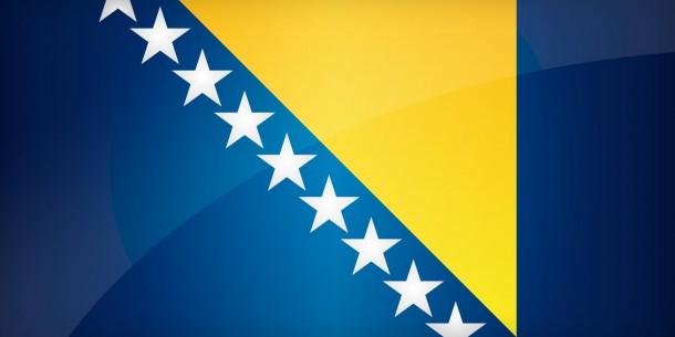 bosnia flag (15)