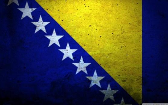 bosnia flag (17)