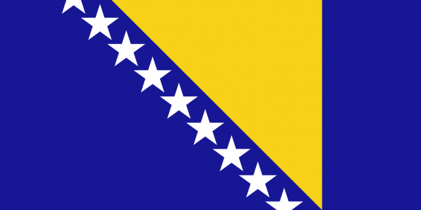 bosnia flag (2)