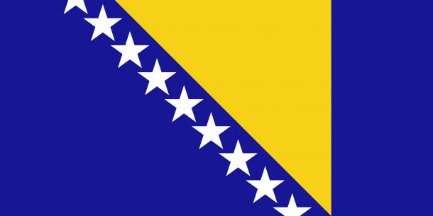 bosnia flag (3)