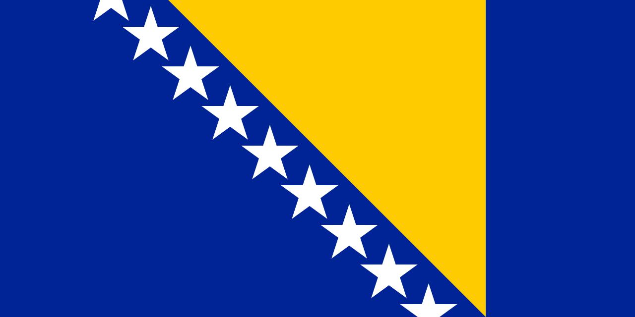 bosnia flag (6)