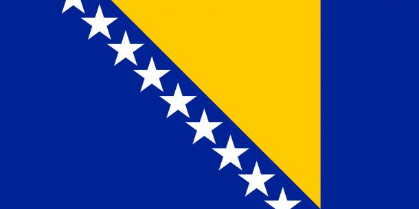 bosnia flag (7)