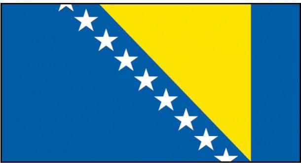 bosnia flag (9)