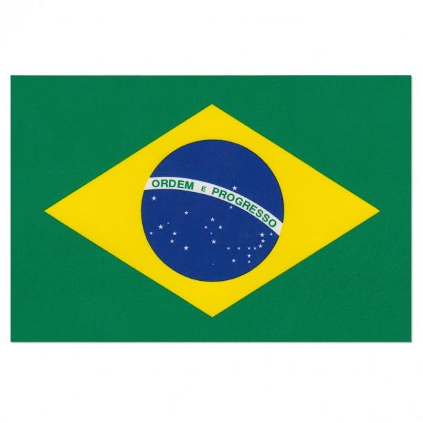 brazil flag (24)