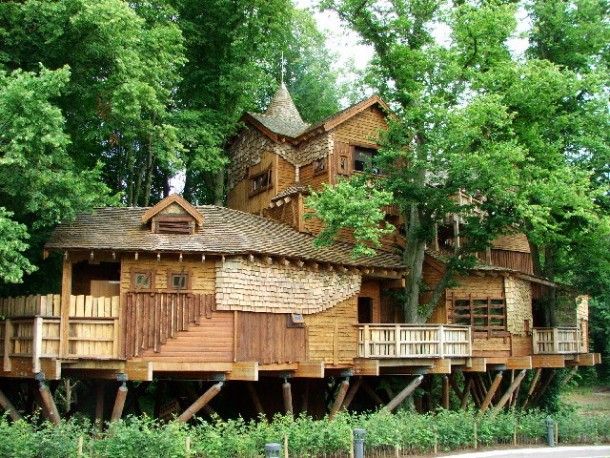 Amazing treehouse 10