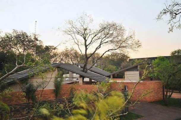 Amazing treehouse 12