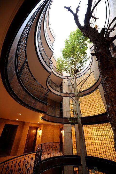 Amazing treehouse 15