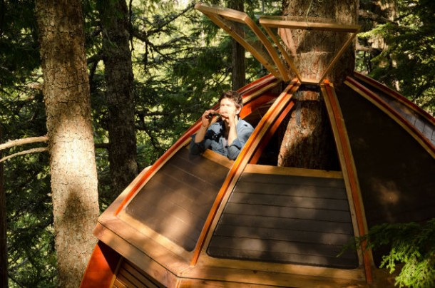 Amazing treehouse 21