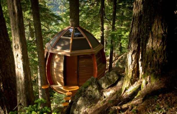 Amazing treehouse 22