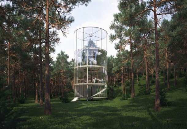 Amazing treehouse 24
