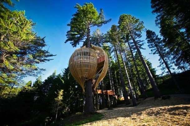 Amazing treehouse 28